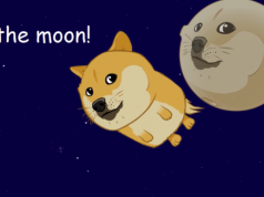 Dogecoin Valore to the moon